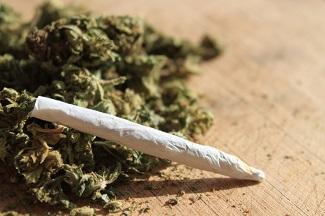 Marijuana Lawyer Miami